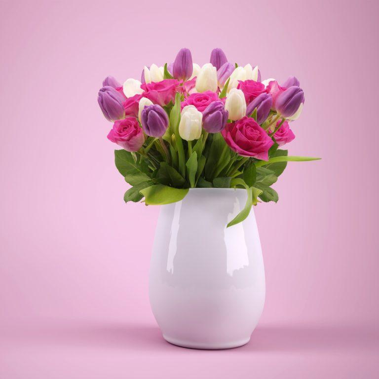 Tulip Flowers | Spring flowers