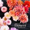 Best flower arrangement books