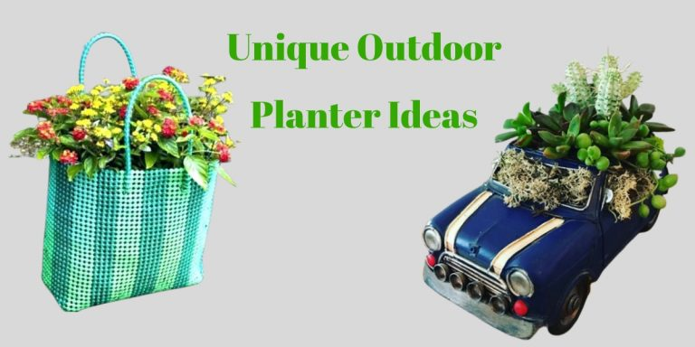 Unique Outdoor Planters Ideas