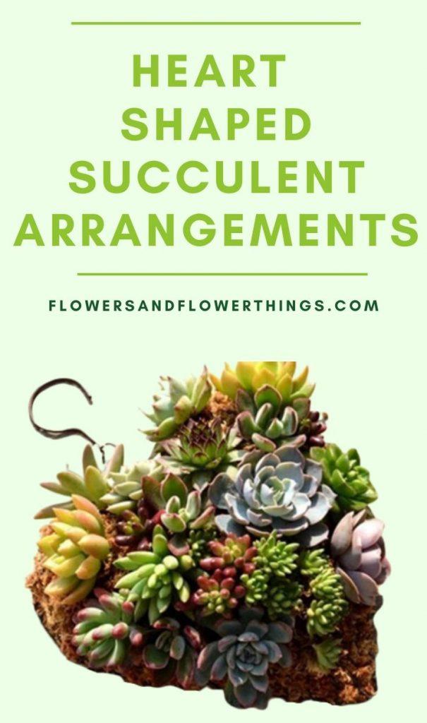 DIY Heart Shaped Succulent planter arrangement