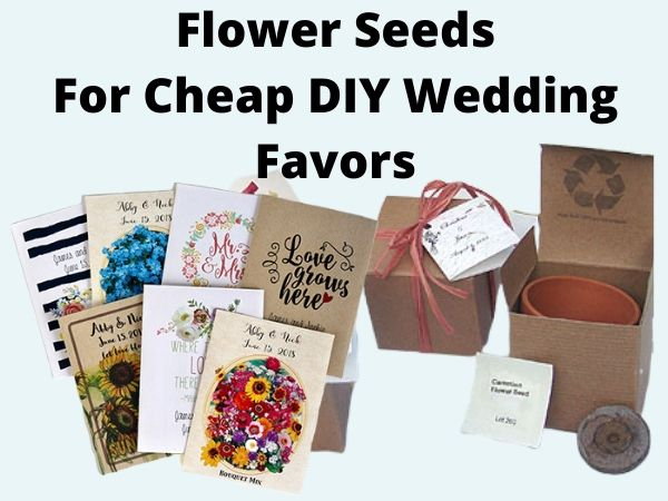 Flower Seeds For Cheap DIY Wedding Favors