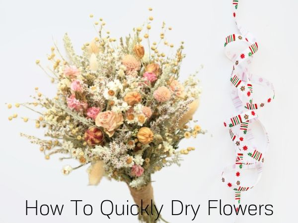 How To Quickly Dry Flowers DIY