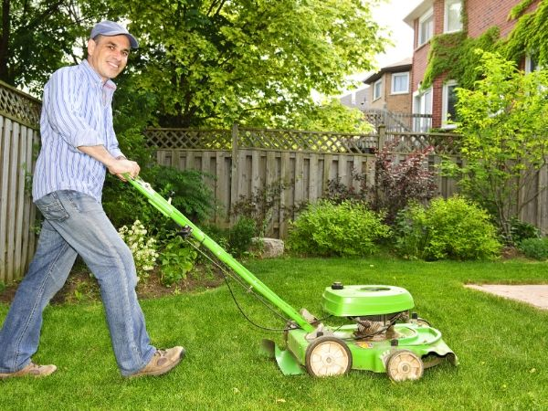 Growing Green Lawn Grass and Care Tips