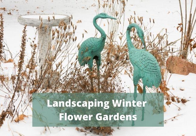 Winter Flower Garden Landscaping